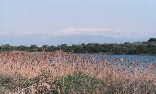 A small lake we passed on the motorway before reachin Atalanti in our journey to Meteora